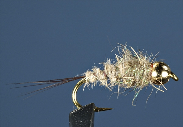 mayfly-nymph.jpg